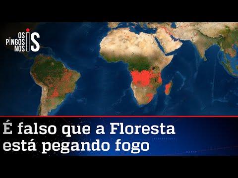 Amazônia não está em chamas, mostra Nasa