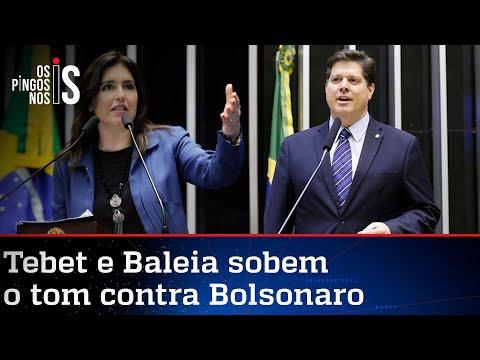 Tebet e Baleia querem frente democrática contra Bolsonaro