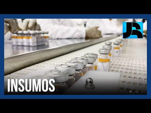 Importação de insumos de outros países impacta na cobertura de vacinação no Brasil